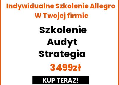 Indywidualne Szkolenie w Twojej firmie + Warsztat Ads Allegro + Audyt Aukcji